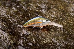 Leurre de pêche wobbler sur une pierre humide avec de la mousse