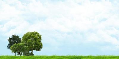 Prairie verte et ciel nuageux, vue panoramique, illustration 3d photo