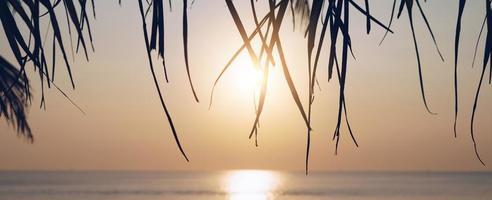 coucher de soleil sur la plage de la nature tropicale photo
