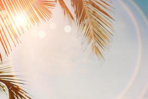 cocotiers de palmiers tropicaux sur le ciel coucher de soleil flare et bokeh nature photo