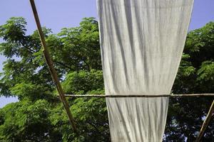 rideaux extérieurs près des arbres