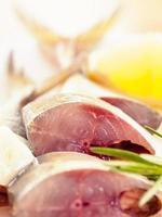 poisson maquereau frais photo
