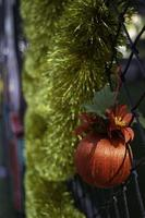 ornement de Noël suspendu photo
