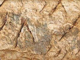 mur de roche ou de pierre pour le fond ou la texture photo