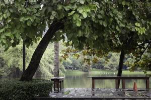 terrasse surplombant le lac