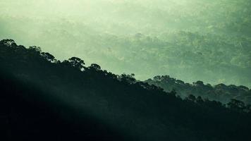 montagnes de la forêt tropicale