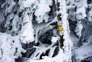 panneau touristique caché sous la neige photo