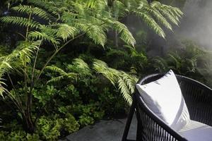 chaise dans le jardin photo