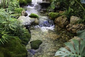 ruisseau avec rochers et petite cascade photo