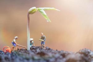 Jardiniers miniatures prenant soin de faire pousser des germes dans un champ, concept d'environnement