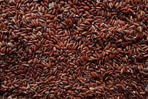 gros plan de riz rouge en vrac photo