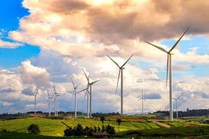 champ d'éoliennes photo