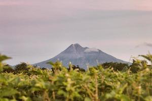 vue panoramique sur une immense montagne photo