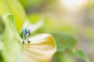 Peintre miniature à colorier sur une feuille verte avec un arrière-plan de verdure floue, concept d'environnement photo