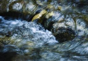 détail d'un ruisseau de montagne photo