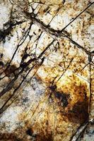 détail d'une pierre fissurée photo