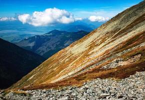 herbe brune à flanc de montagne photo