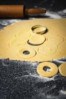 pâte moulée pour tartes photo