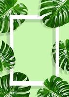 Cadre de feuilles vertes tropicales avec bordures blanches sur fond vert