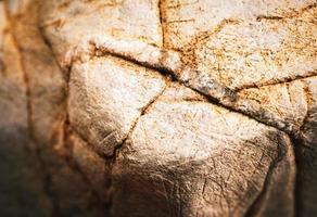calcaire brun usé photo