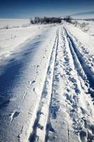 piste de ski de fond à travers un paysage enneigé