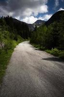 chemin gris vers les hautes montagnes