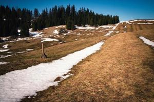 la neige fond sur une prairie photo