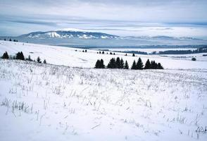 paysage enneigé sur les hauts plateaux photo