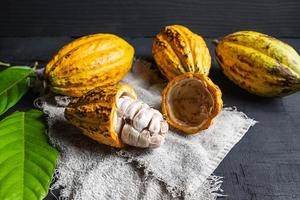 Gros plan de fruits de cacao coupés en deux photo