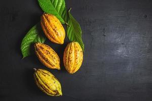vue de dessus de fruits de cacao frais photo