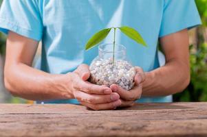 une personne plantant des arbres dans des pots, concept pour l'amour des plantes et de l'environnement photo