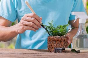 une personne plantant des arbres dans des pots, concept pour l'amour des plantes et de l'environnement