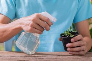 une personne pulvérisant de l'eau sur une plante dans un pot photo