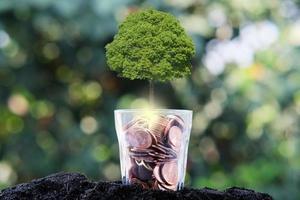 arbre poussant à partir d'un arbre, concept de croissance des entreprises photo
