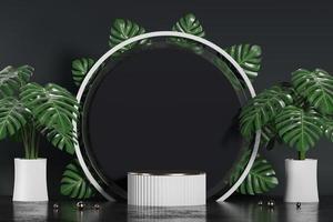 podium blanc pour vitrine de présentation de produits avec pot monstera