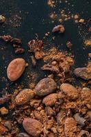 Graines de fèves de cacao, sur fond noir photo