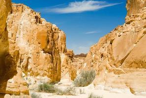 vallée dans un canyon rocheux photo