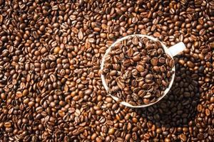 grains de café brun dans une tasse blanche