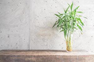 décoration de plantes de vase avec salle vide