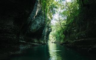 ruisseau sombre dans une forêt photo