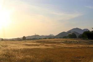 Champ sec ouvert au coucher du soleil dans la vallée de la Californie photo