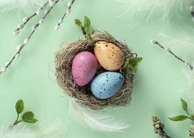 fond de pâques avec saule, oeufs peints dans le nid. Pâques orthodoxe, dimanche de saule chatte