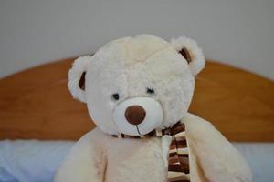 ours en peluche blanc avec un foulard photo