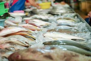 mise au point sélective sur le poisson frais cru sur le plateau pour la vente sur le marché photo