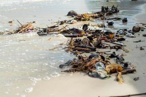 Photo de mise au point sélective des ordures et des déchets sur la plage