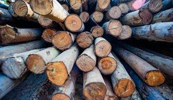Texture abstraite de perspective et fond de bois en bois photo