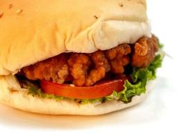 image de nourriture de hamburger photo