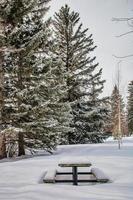 table de pique-nique dans la neige photo