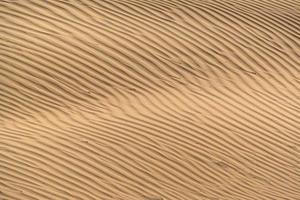 belle dune de sable dans le désert de thar, jaisalmer, rajasthan, inde. photo