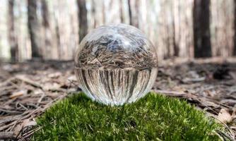 boule de verre dans la forêt photo